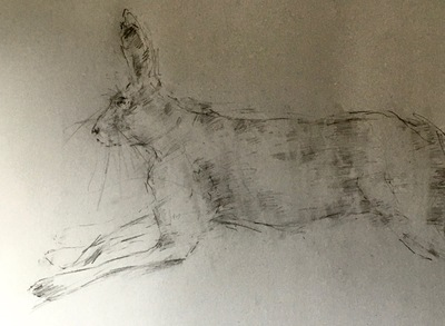 Joyce Gunn Cairns Hare Leaping Pencil  30 x 42 cms £175 (unframed)