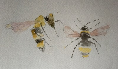 Joyce Gunn Cairns Bees Watercolour  20 x 29 cms £175 (unframed)