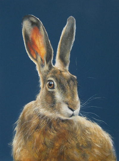 Lesley McLaren  Midsummer Hare Oil on gesso panel  40 x 30 cms £400 SOLD