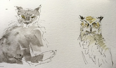 Joyce Gunn Cairns Owl and The Pussycat Ink and watercolour  24 x 30 cms £295 SOLD