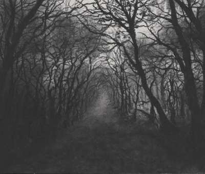 Jonathan Stockley The Path Through the Dark Wood Charcoal  10 x 12 cms £195 (unframed)