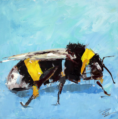 Paul Graham Bee Study Oil on board  20 x 20 cms £450