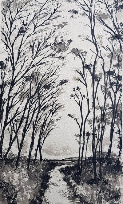 Naomi Rae Through the Trees, Onto the Beach, Brodick, Isle of Arran Indian ink on paper  25 x 15 cms £215 SOLD