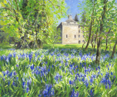 Katherine Cowtan Bluebells at Culcreuch Castle Oil on canvas board  25 x 30 cms   £375