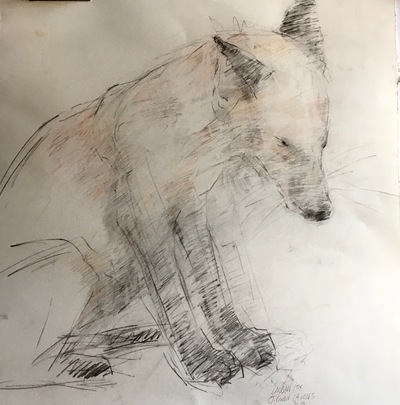 Joyce Gunn Cairns Fox Pencil  60 x 42 cms £275 (unframed)